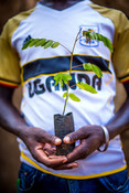 Franco, a young volunteer from our Youth Motivations project pictured with a seedling. He has planted thousands of trees to protect the environment and combat climate change.
